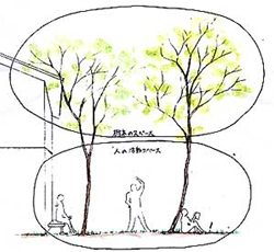 山の雑木を庭に用いた際のスケールを表しています。