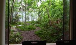 1階ダイニングから見た雑木の庭の景です。