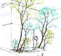 室内と庭との中間領域というべき屋外テラス周辺の雑木植栽モデルです